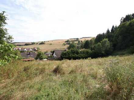 Wochenendgrundstück mit Weitblick in ruhiger Lage von Katzenbach