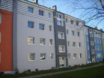 Gemütliche 2-Zimmer Wohnung in Haspe-Quambusch
