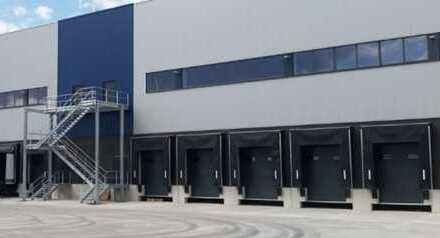 """BAUMÜLLER & CO."" ca. 10.000 m² NEUBAU-Logistikfläche - Nähe A 65 - Rampen- /ebenerdige Andienung"