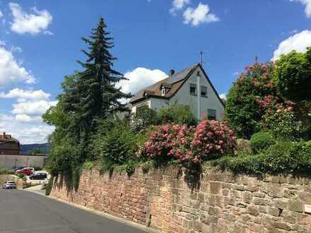 Äußerst großzügiges Haus (als MFH oder EFH) und Gartengrundstück
