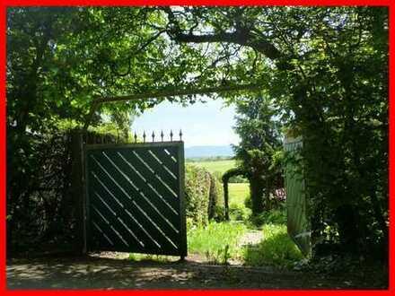 Entspannen und dem Alltag entfliehen - Wochenendgrundstück mit Gartenhaus!