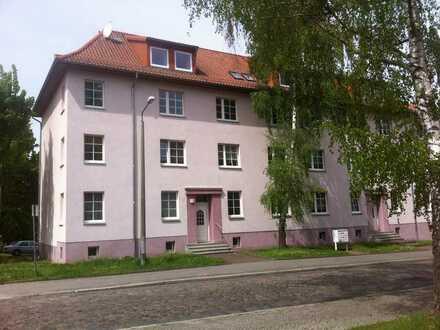 2-Zimmer Wohnung im grünen Eberswalde