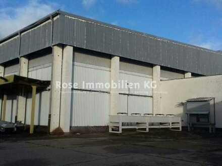 ROSE IMMOBILIEN KG: Lager-/Produktion zu vermieten!