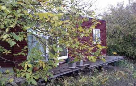 ruhige Wohnung in der Natur