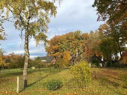 6.417 qm Grundstück mit Bestands-FACHWERK-HAUS in Diepholz. Idylle pur!