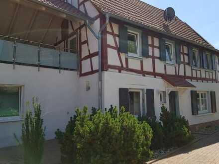 Helle 1 ZKB Wohnung in Herxheim