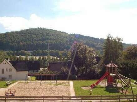 Hi- Dahlbruch: Sehr schöne 3 ZKB-Wohnung, sonniger Balkon / auch für WG ! Kinderspielplatz gegenüber