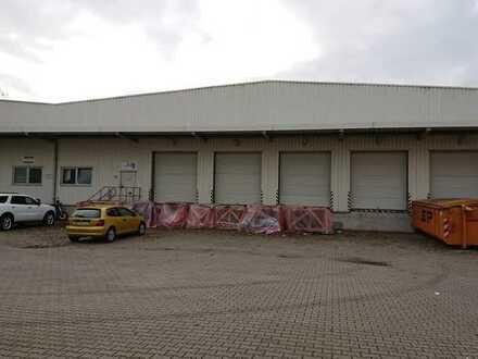 **Moderne Warmhallte in Potsdam**