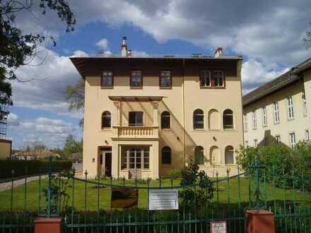 Wohnung im Denkmal mit besonderem Flair, historisch und modern vereint, Kamin