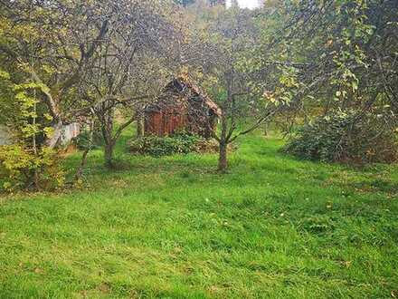 4.LIVE-AUKTION 2021: Idyllisches Grundstück mit Schuppen östlich von Stuttgart