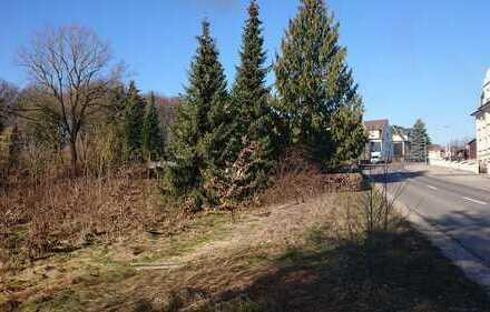 Claußnitz - Großes Grundstück in Ortsrandlage