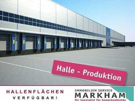 Logistik-Produktion-Neubau in Kaiserslautern (mieten oder kaufen)