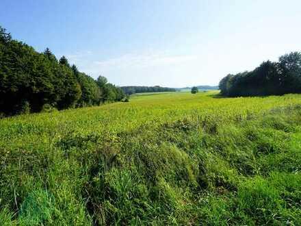 *** Ackerfläche - Gemarkung Waltenhausen ***