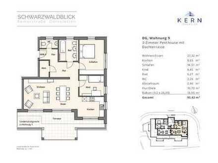 Dachgeschosstraum mit Aussichtsterrasse und modernem Wohnkomfort (Wohnung 9, DG)