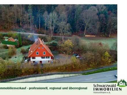 Ehem. Bauernhof mit 2 Bauplätzen in 77761 Schiltach-Vorderlehengericht