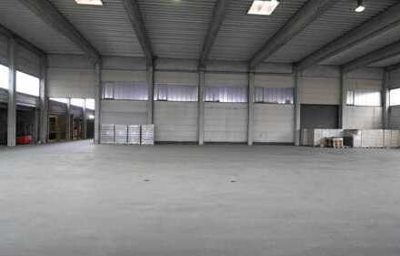 Halle mit großer Freifläche zu vermieten