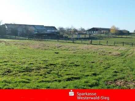 Komplette Reitanlage in Ortsrandlage mit Reithalle, 35 Boxen, 78.000m² Land
