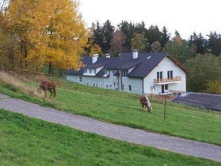schöne,ruhige 2-Zimmer-Wohnung am Rand der Bezirkshauptstadt Rohrbach