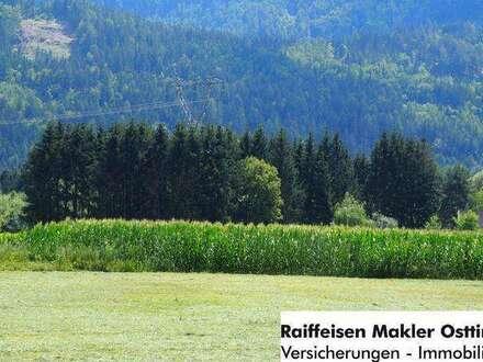 Grundstück (Freilandwidmung) in Lienz zu verkaufen