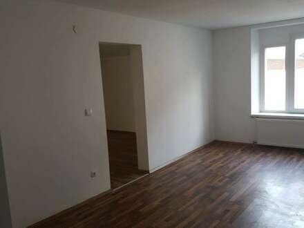 Ebensee Moderne 80 m2 Wohnung und 30 m2 Gästewohnung
