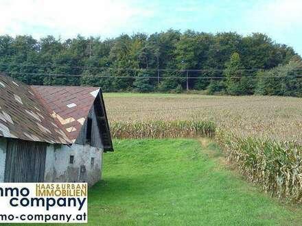 Zwei Bauernhäuser – knapp 4 ha Grund – Zusammen in Einzellage