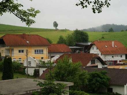 Wohnhaus mit Nebengebäuden und Garagen und ca. 9,2 ha Wald