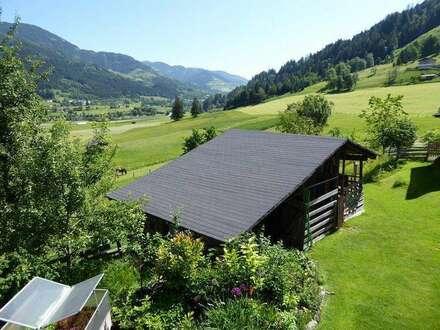 Bruck/Glstr.: Bauernhaus mit Stall u.großem Grundstück Nahe Zell am See
