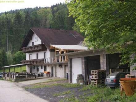 Geschäfts- u. Mehrfamilienhaus in Aussichtslage - Parschlug