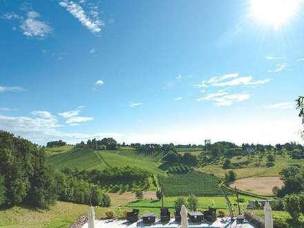 Südsteiermark - Weingut in Einzellage