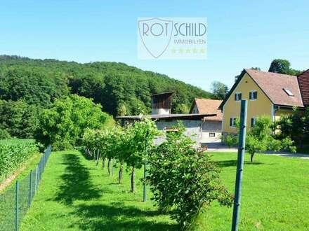wunderschönes Anwesen - ehemalige Landwirtschaft -großzügig, 5000m2 Grund, ausbaubar ! Bestlage !!!