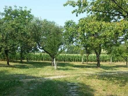 Gepflegter Vierkanthof mit Wiesen, Acker und kleinem Waldstück - zu Verkaufen