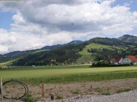 Grosslobming: Erstbezugs-Eigenheim, Block B Top 7, Stock 1