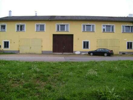 Bauernhaus mit 2 Lagerhallen!