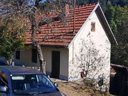 *** NEUER PREIS *** : Bastlerhaus in Gallizien !! ***