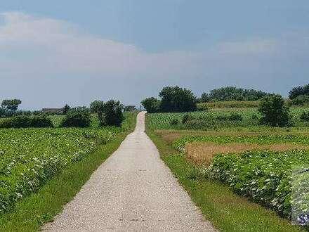 Eferding Nähe: Landwirtschaft mit ca 8,5 ha Grund zu verkaufen