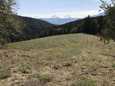 Bleiburgnähe Bauernhof mit 33 ha Grund, Alleinlage, Ruhelage, Sonnenlage