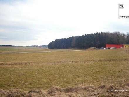 Großes Grundstück im Gewerbegebiet in Feldkirchen bei Mattighofen zu kaufen (auch teilbar)