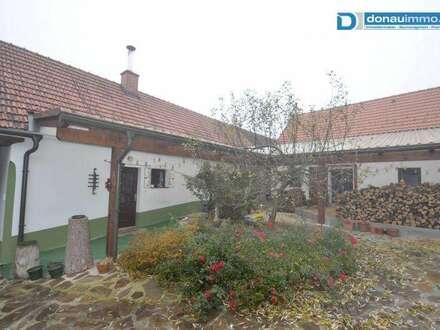 Entzückendes Bauernhaus mit Anlage geeignet für Pferdehaltung in der Nähe von Horn