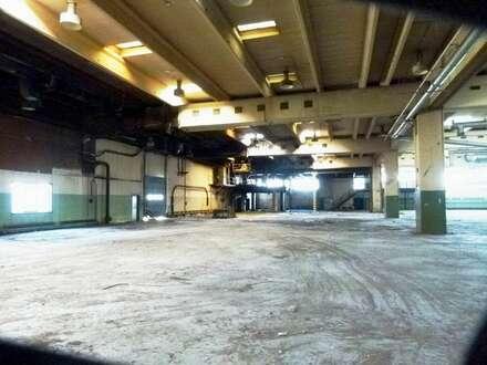 Sensationsmiete - Betriebsobjekt 2.400 m² im Bereich Baden/Traiskirchen