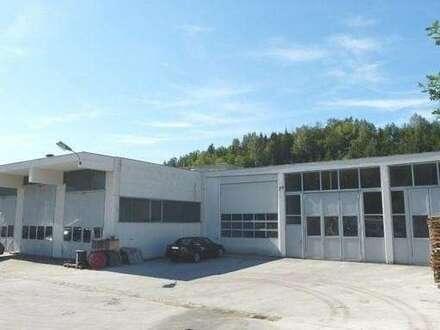 Klagenfurt-Nord Halle 700 m² + 182 m² Werkstätte + Büro 250 m² + 5000 m² Grund