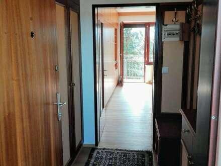 Neu renovierte sonnige Einraumwohnung mit Balkon in ruhiger Lage