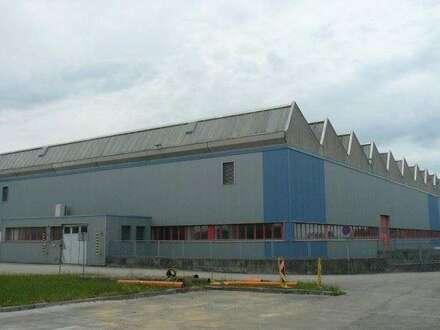 Moderne Produktionshalle inkl. Büros
