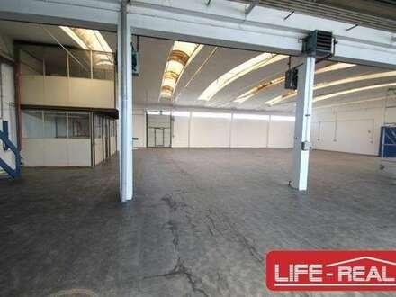 Tolle Halle mit schönem Büro und asphaltiertem Vorplatz