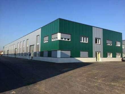 Multifunktionelle Hallen ca. 450 m2 - 1.000 m2