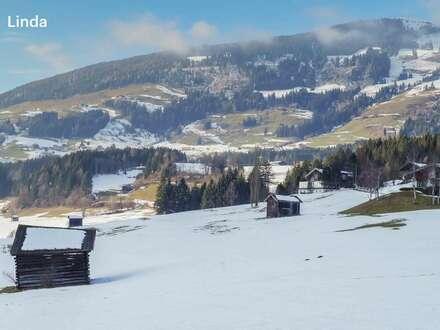 Eigentumswohnung mit Touristische Nutzung in Hollersbach