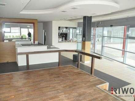 Geschäftslokal/Büro mit großer Terrasse