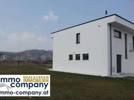 Schickes, funkelnagelneues Einfamilienhaus in angenehmer Wohnsiedlung