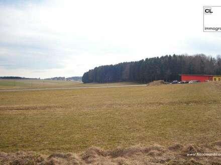 Großes Grundstück im Gewerbegebiet in Feldkirchen bei Mattighofen zu kaufen auch teilbar