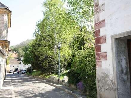 ehemaliges Winzerhaus , derzeit mit 2 Wohnungen und einem Lokal im EG