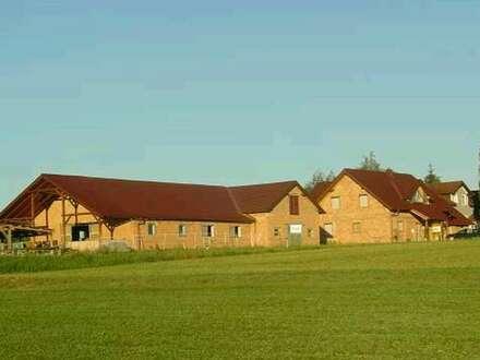 Reitanlage - Einfamilienhaus - Pferdestall